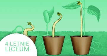 Okładka kursu z Biologii do 4-letniego liceum Fizjologia roślin