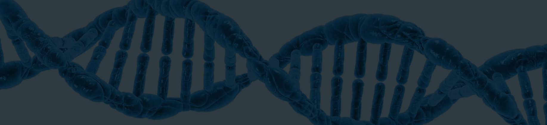 Genetyka (3L)