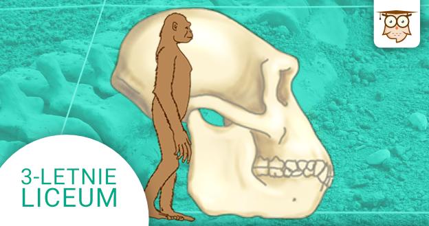Okładka kursu z Biologii do 3-letniego liceum Ewolucjonizm
