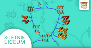 Okładka kursu z Biologii do 3-letniego liceum Metabolizm