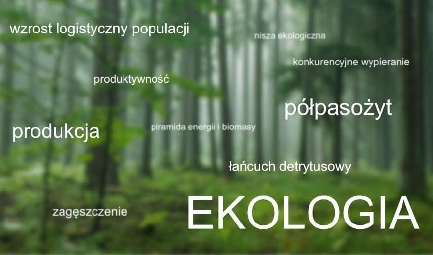 Grafika wyróżniająca do wpisu Jak ekologia rozkłada maturzystów na łopatki...