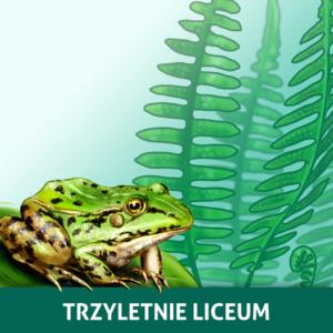 Okładka pakietu kursów biologii z działu Różnorodność wirusów i organizmów do 3-letenigo liceum