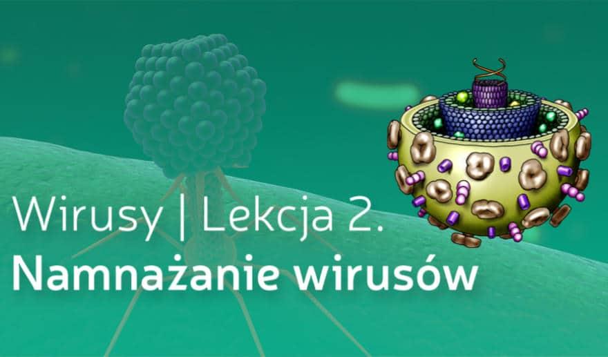 Grafika wyróżniająca do wpisu Namnażanie wirusów - nowa lekcja w kursie: Wirusy już dostępna