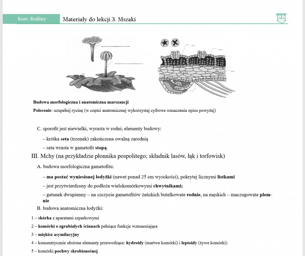 notatka z biologii mszaki
